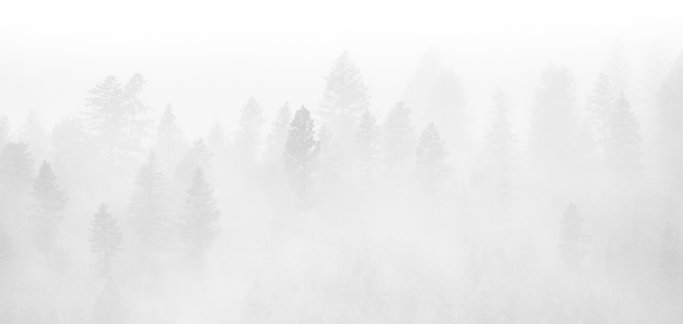 Valley-in-the-fog