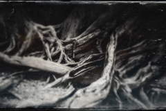 My-TinType-by-Hipstamatic-12